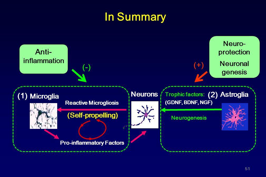 In Summary Pro-inflammatory Factors Reactive Microgliosis (Self-propelling) Microglia Neurons Trophic factors: (GDNF, BDNF, NGF) Neurogenesis Astrogli