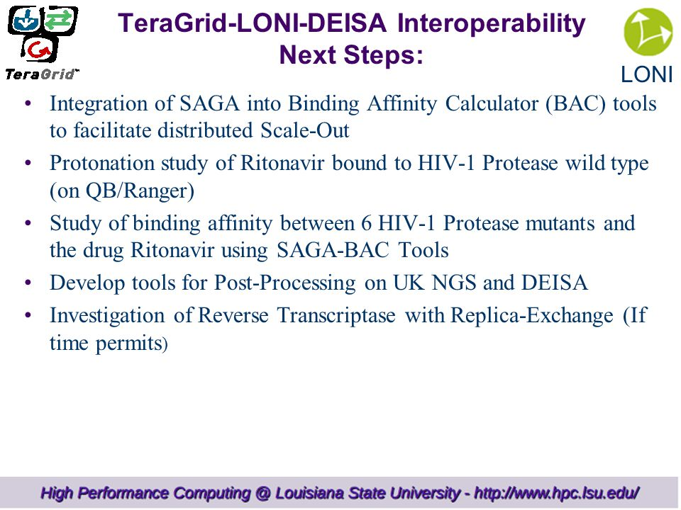 LONI TeraGrid-LONI-DEISA Interoperability Next Steps: Integration of SAGA into Binding Affinity Calculator (BAC) tools to facilitate distributed Scale-Out Protonation study of Ritonavir bound to HIV-1 Protease wild type (on QB/Ranger) Study of binding affinity between 6 HIV-1 Protease mutants and the drug Ritonavir using SAGA-BAC Tools Develop tools for Post-Processing on UK NGS and DEISA Investigation of Reverse Transcriptase with Replica-Exchange (If time permits )