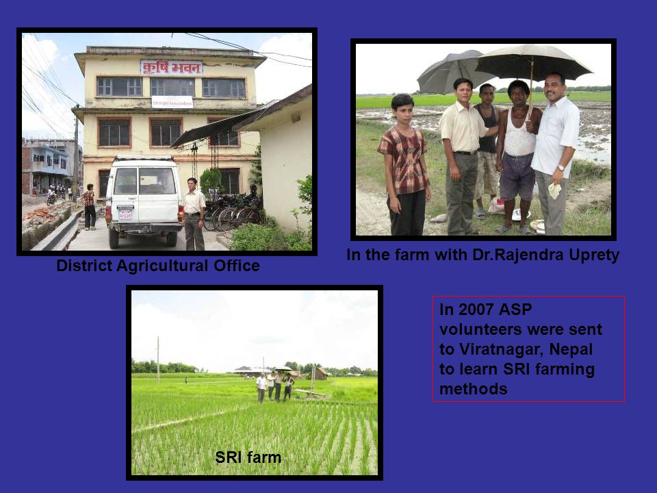 In 2007 ASP volunteers were sent to Viratnagar, Nepal to learn SRI farming methods District Agricultural Office SRI farm In the farm with Dr.Rajendra Uprety