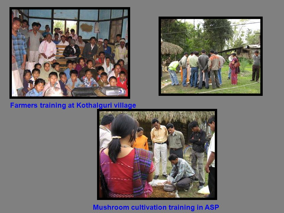 Farmers training at Kothalguri village Mushroom cultivation training in ASP