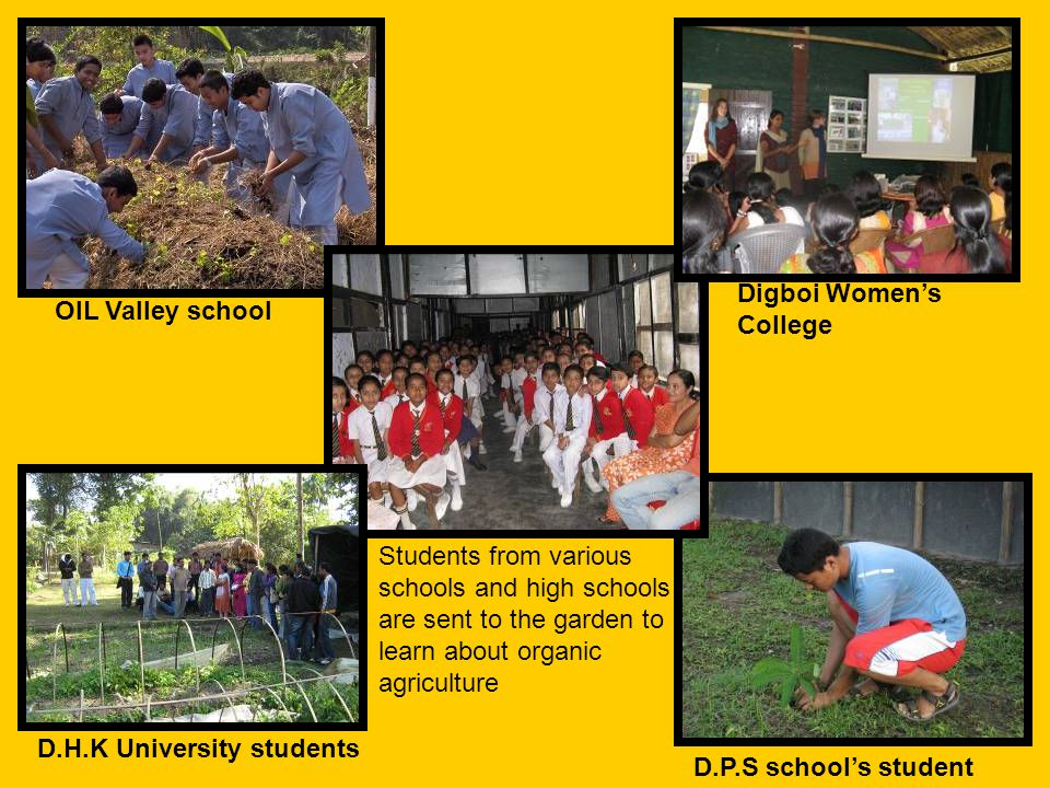 Students from various schools and high schools are sent to the garden to learn about organic agriculture D.H.K University students D.P.S school's student OIL Valley school Digboi Women's College
