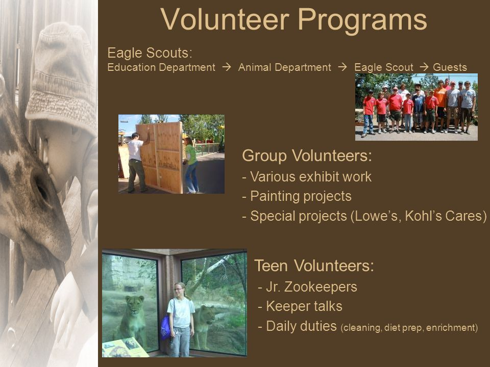 Volunteer Programs Eagle Scouts: Education Department  Animal Department  Eagle Scout  Guests Group Volunteers: - Various exhibit work - Painting projects - Special projects (Lowe's, Kohl's Cares) Teen Volunteers: - Jr.