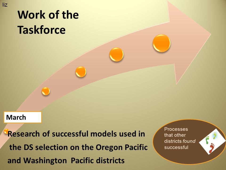 Research of successful models used in the DS selection on the Oregon Pacific and Washington Pacific districts March Work of the Taskforce Processes that other districts found successful liz
