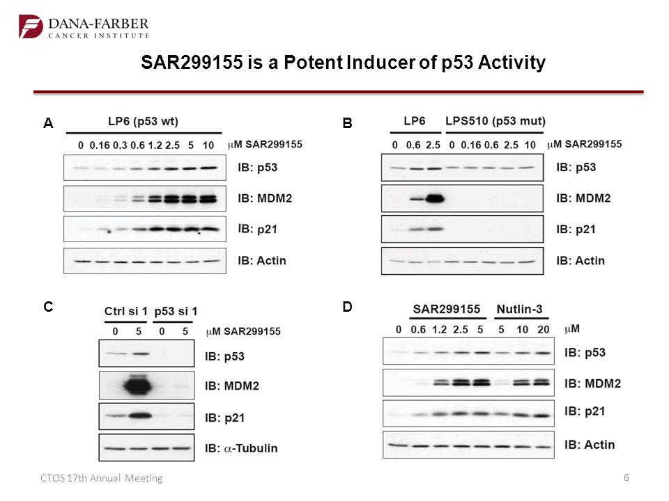 SAR299155 Decreases Cell Viability in Liposarcoma Cells with Wild-type p53 CTOS 17th Annual Meeting7 AB D C LP6 (p53 wt) LP6 (p53 mut) LP6 (+p53 siRNA)