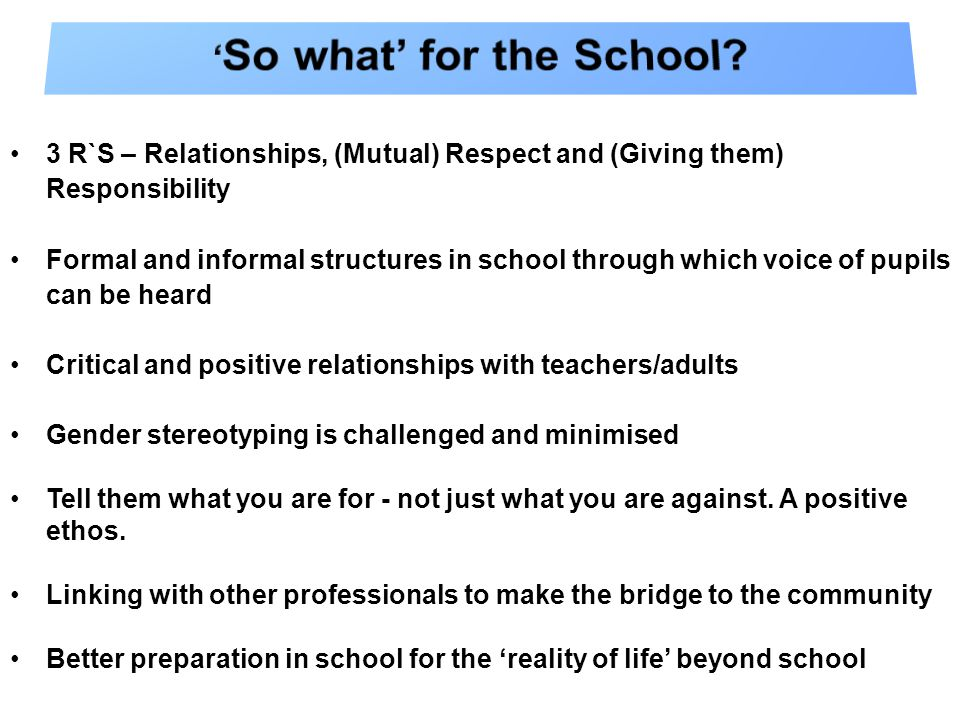 3 R`S – Relationships, (Mutual) Respect and (Giving them) Responsibility Formal and informal structures in school through which voice of pupils can be heard Critical and positive relationships with teachers/adults Gender stereotyping is challenged and minimised Tell them what you are for - not just what you are against.