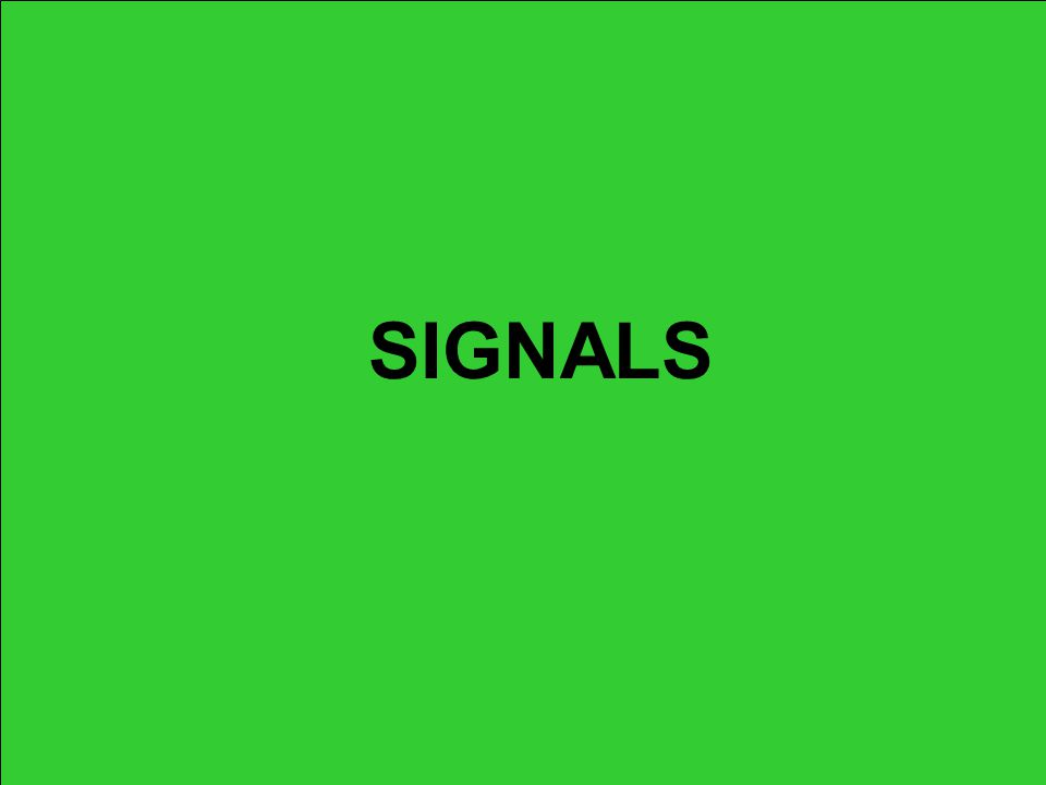 DO NOT PITCH SIGNAL –Right arm straight out with palm and fingers up; –This signal is used by the plate umpire: At the beginning of the game; At the start of a new inning; After time has been granted or after all dead ball situations.