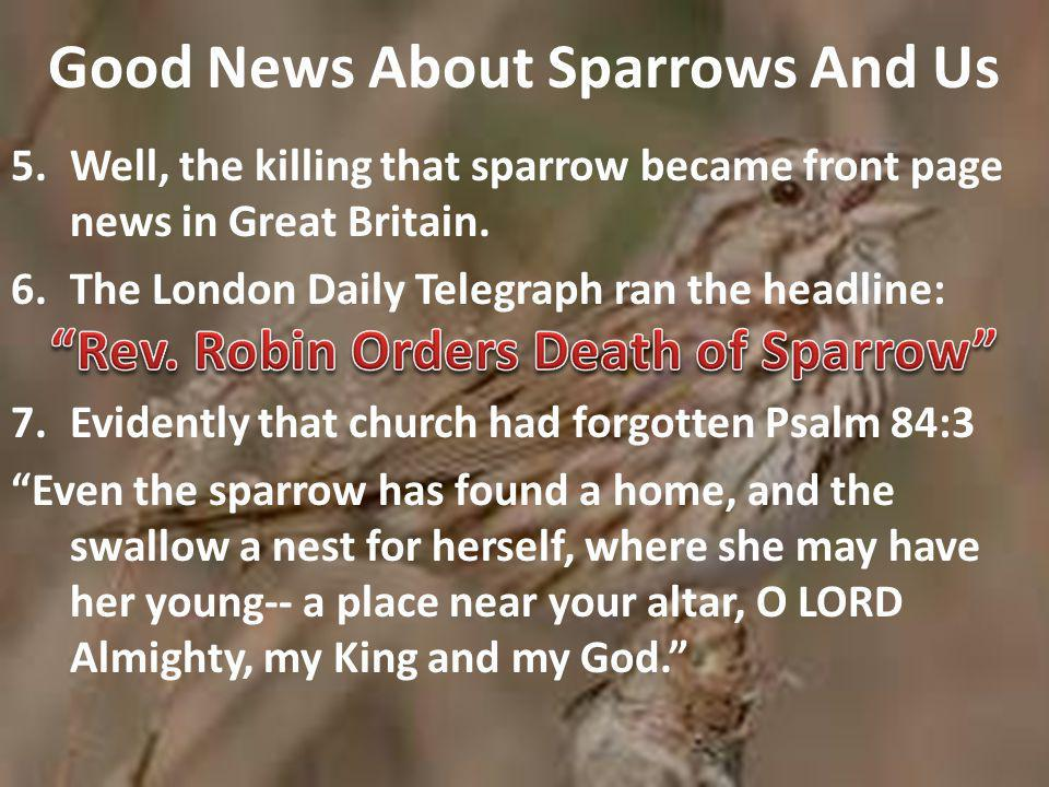 Good News About Sparrows And Us 8.There is another passage of Scripture that is even more reassuring than this one, and it comes from our Gospel Lesson today.