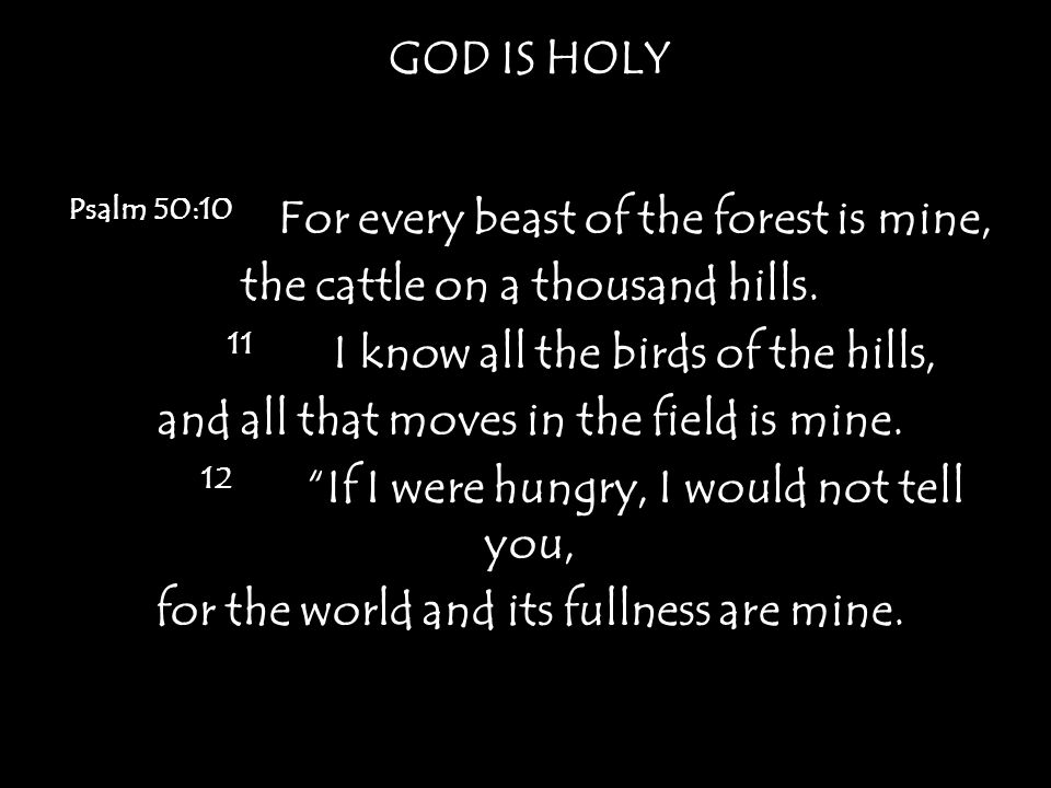 GOD IS HOLY Psalm 50:10 For every beast of the forest is mine, the cattle on a thousand hills.