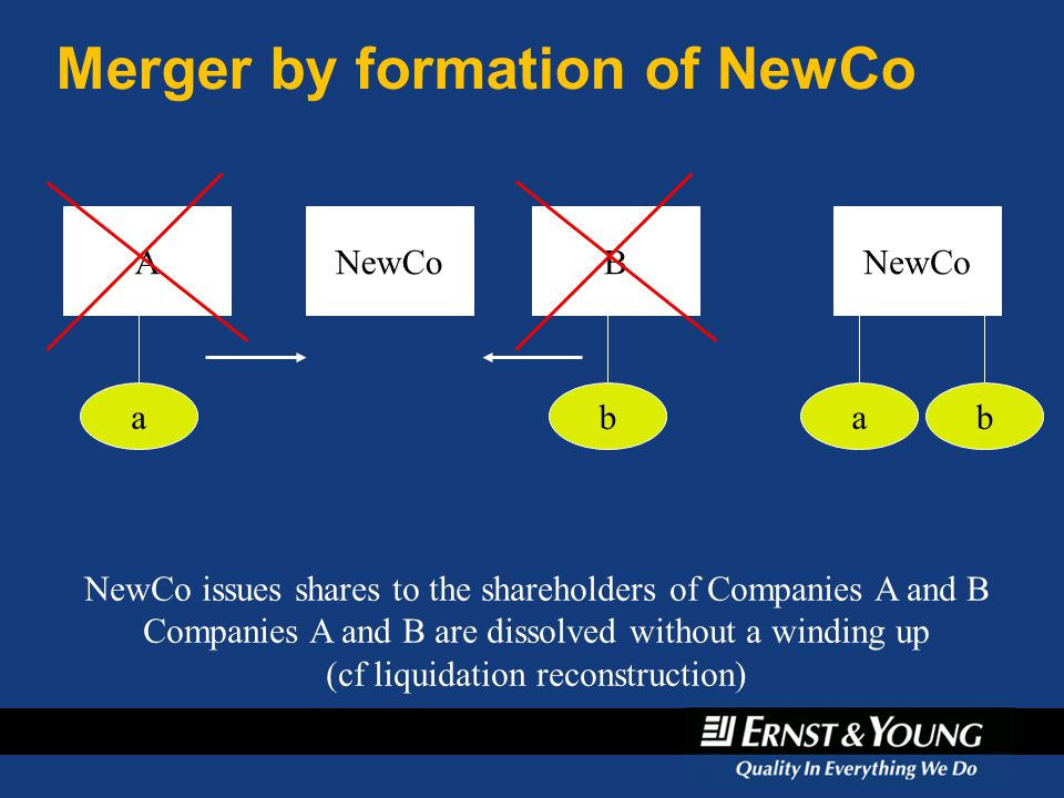 Merger by formation of NewCo A a NewCoB b ab NewCo issues shares to the shareholders of Companies A and B Companies A and B are dissolved without a wi