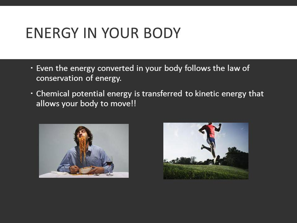 ENERGY IN YOUR BODY  Even the energy converted in your body follows the law of conservation of energy.  Chemical potential energy is transferred to