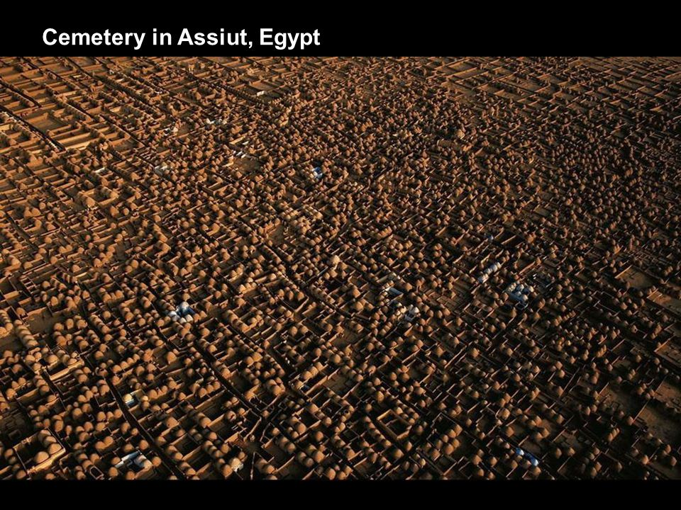 Cemetery in Assiut, Egypt