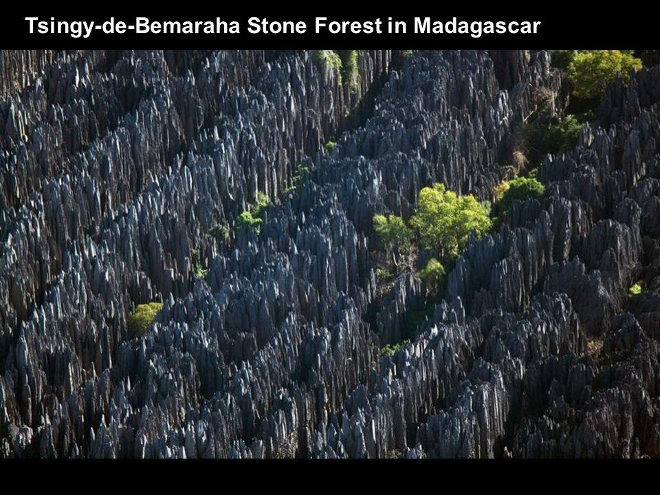 Tsingy-de-Bemaraha Stone Forest in Madagascar