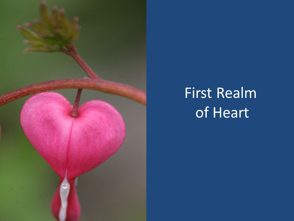 First Realm of Heart