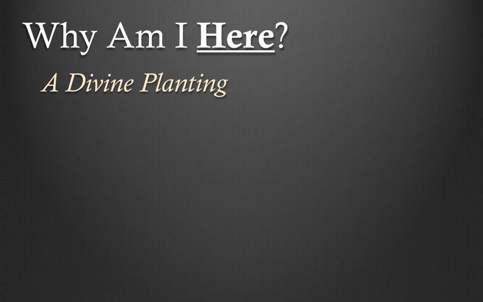 A Divine Planting