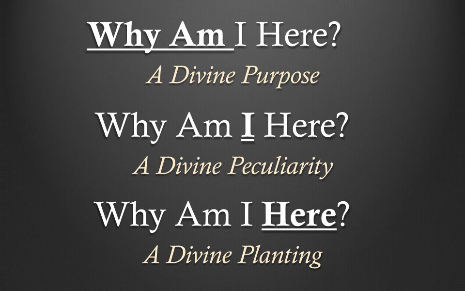Why Am I Here? A Divine Purpose A Divine Peculiarity A Divine Planting Why Am I Here?