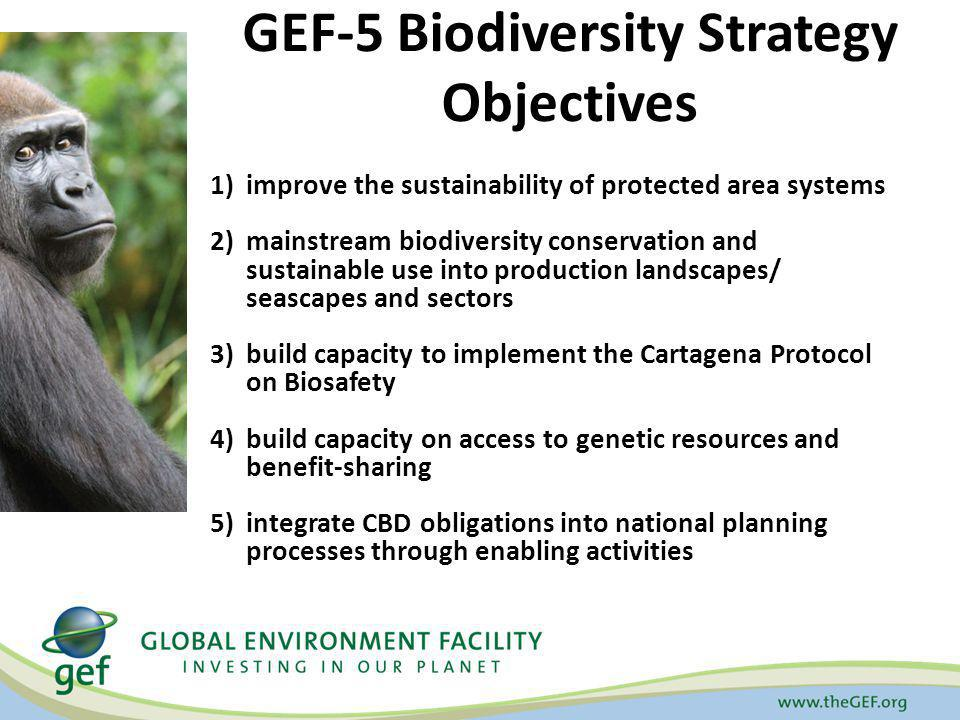 GEF-5 Biodiversity Strategy Objectives 1)improve the sustainability of protected area systems 2)mainstream biodiversity conservation and sustainable u