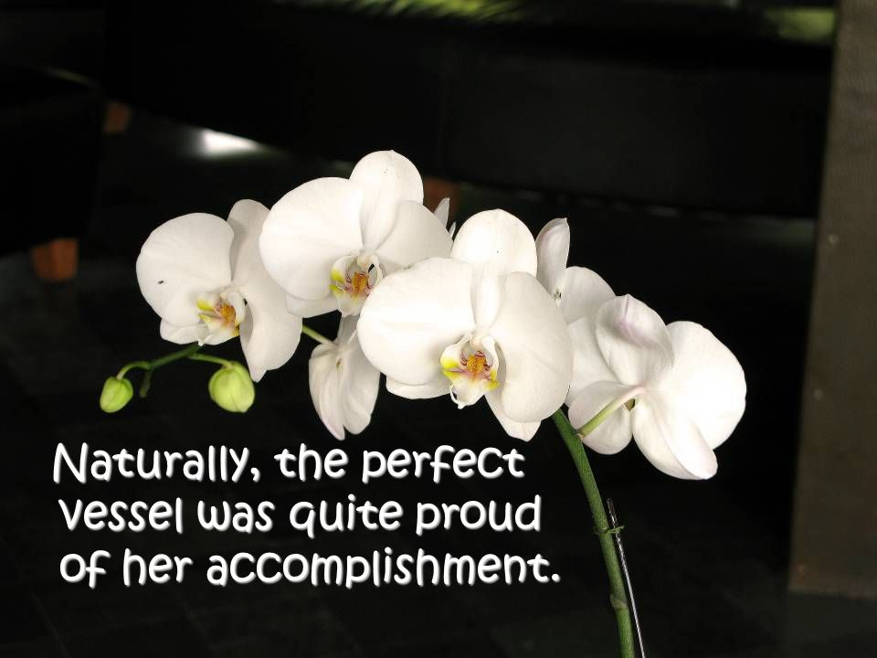 Naturally, the perfect vessel was quite proud of her accomplishment.
