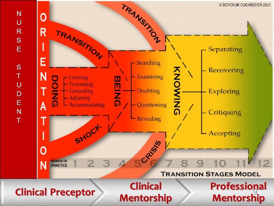 Clinical Preceptor Clinical Mentorship Professional Mentorship 9