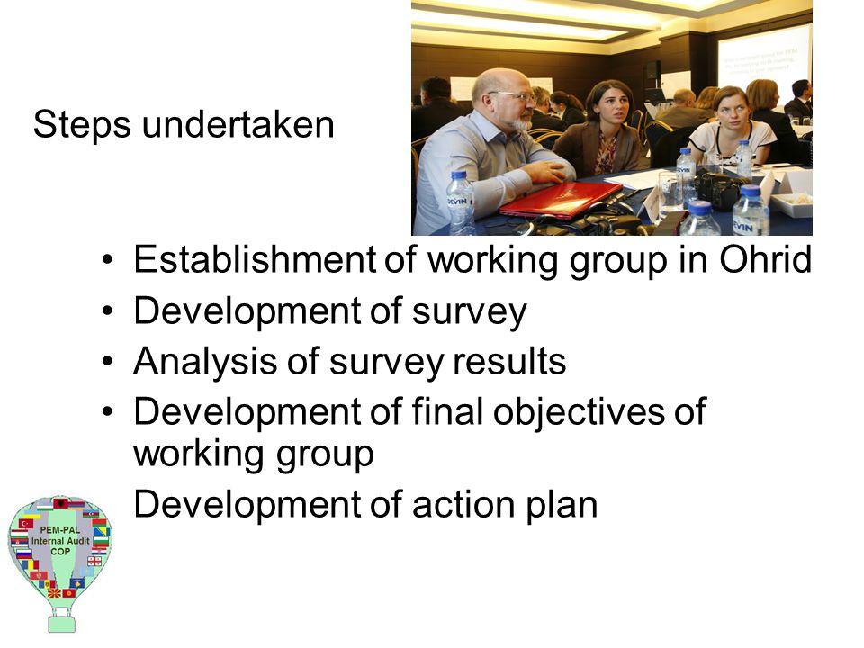 Steps undertaken Establishment of working group in Ohrid Development of survey Analysis of survey results Development of final objectives of working group Development of action plan