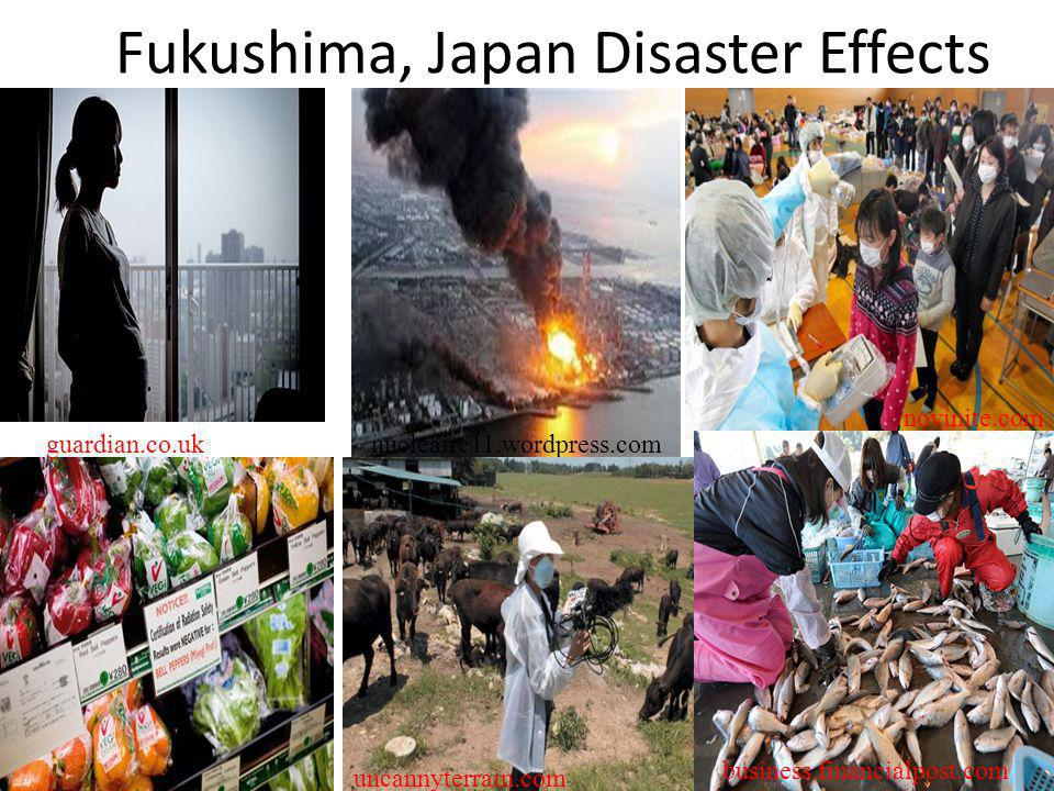 Fukushima, Japan Disaster Effects novinite.com guardian.co.uknucleaire11.wordpress.com uncannyterrain.com business.financialpost.com