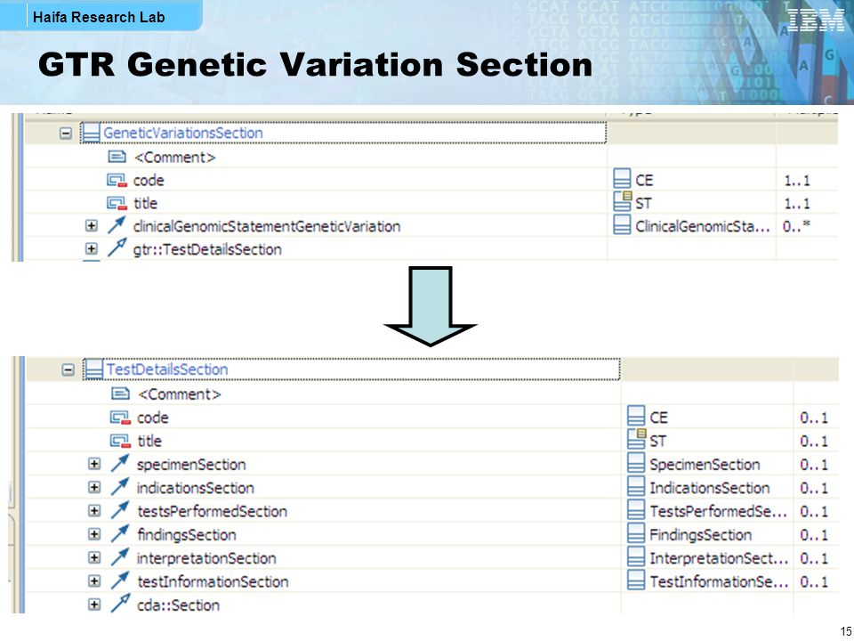 Haifa Research Lab 15 GTR Genetic Variation Section