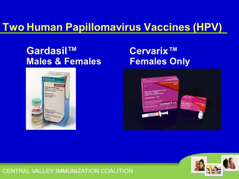 Two Human Papillomavirus Vaccines (HPV) Gardasil™ Cervarix™ Males & Females Females Only