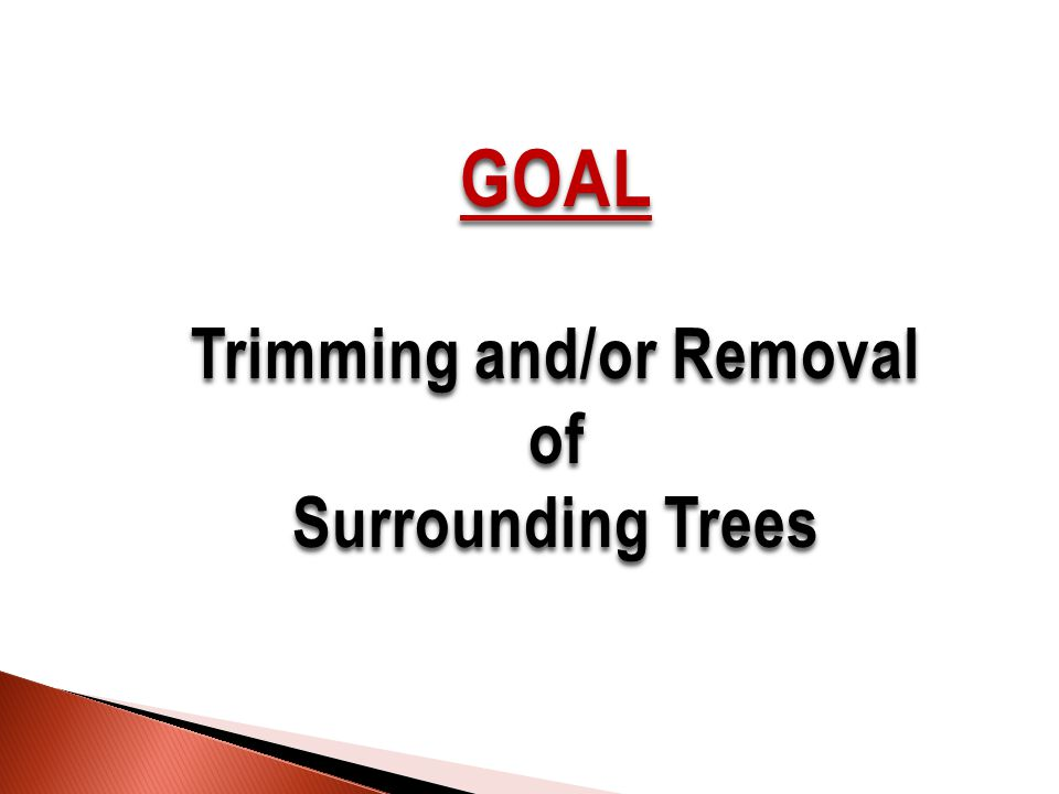 GOAL Trimming and/or Removal of Surrounding Trees