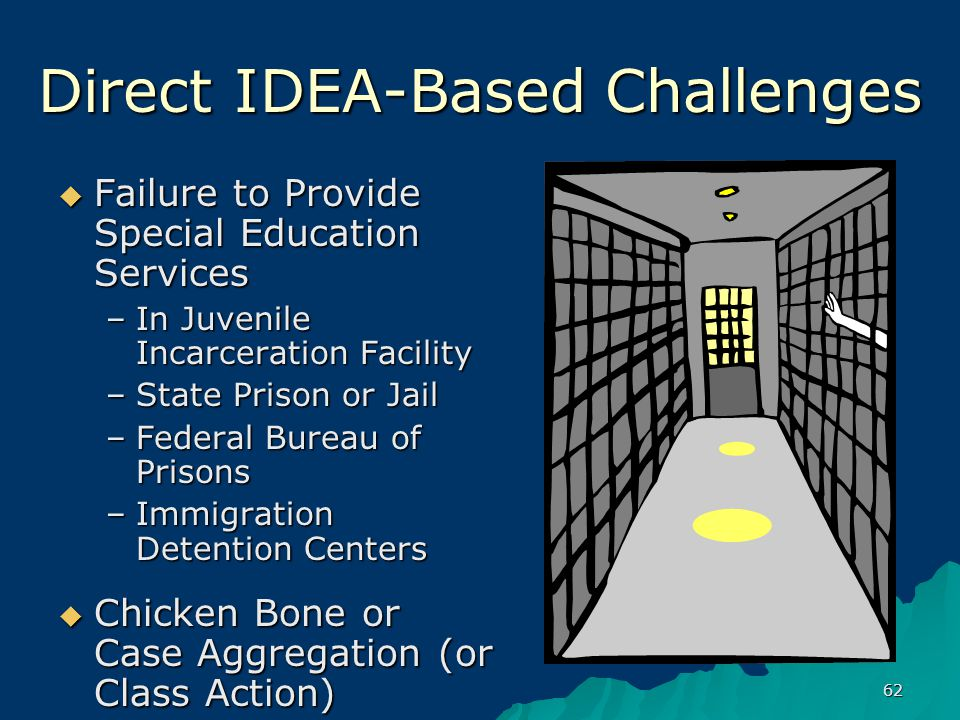 62 Direct IDEA-Based Challenges  Failure to Provide Special Education Services –In Juvenile Incarceration Facility –State Prison or Jail –Federal Bureau of Prisons –Immigration Detention Centers  Chicken Bone or Case Aggregation (or Class Action)