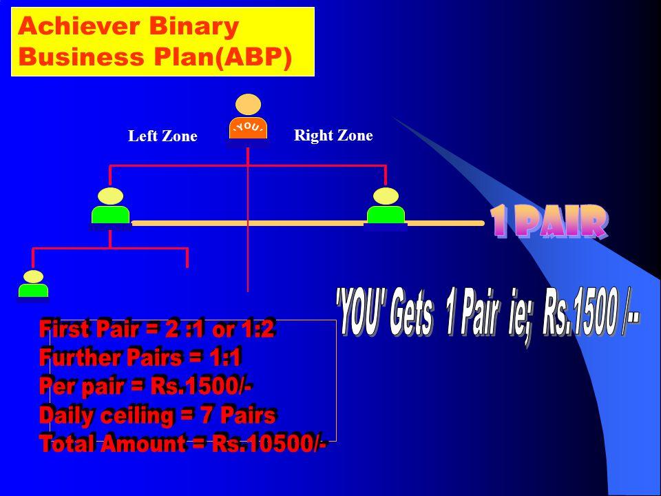 Mega Binary Business Plan(MBP) Right Zone Left Zone