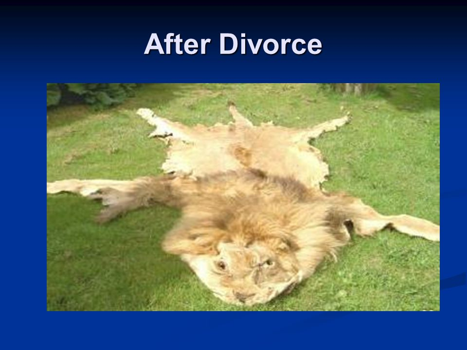 After Divorce