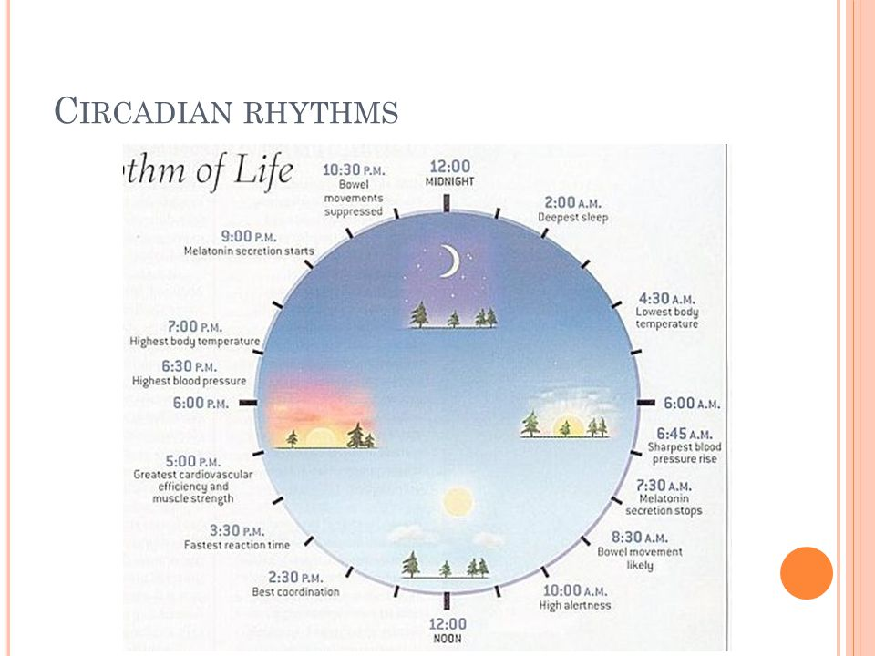 M ELATONIN Night hormone, secretion on pineal gland Strongest regulator is light Melotonin, CBT, cortisol and sleep-wake cycles are in strong correlation C IRCADIAN RHYTHMS