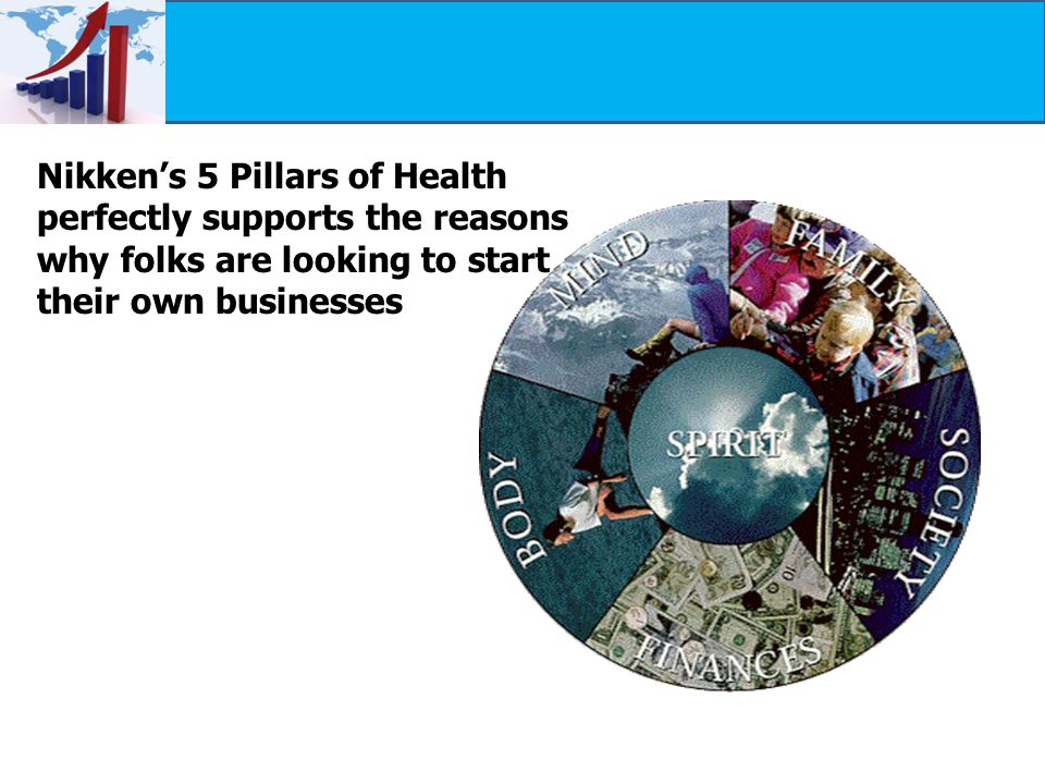 Nikken's 5 Pillars of Health perfectly supports the reasons why folks are looking to start their own businesses