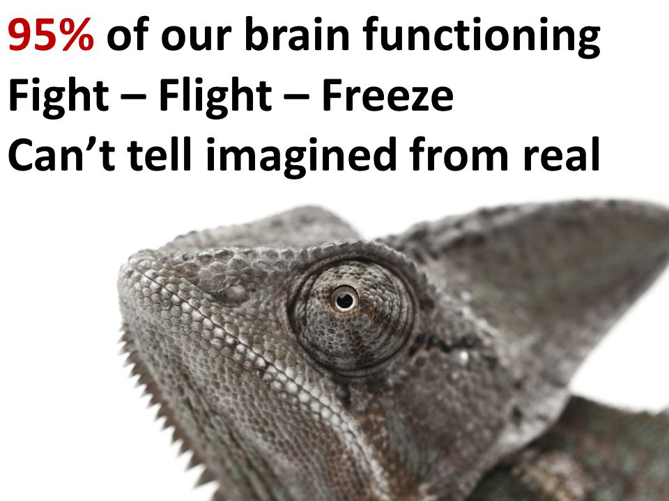95% of our brain functioning Fight – Flight – Freeze Can't tell imagined from real