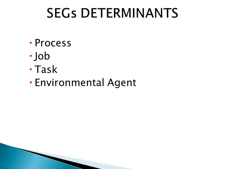  Process  Job  Task  Environmental Agent