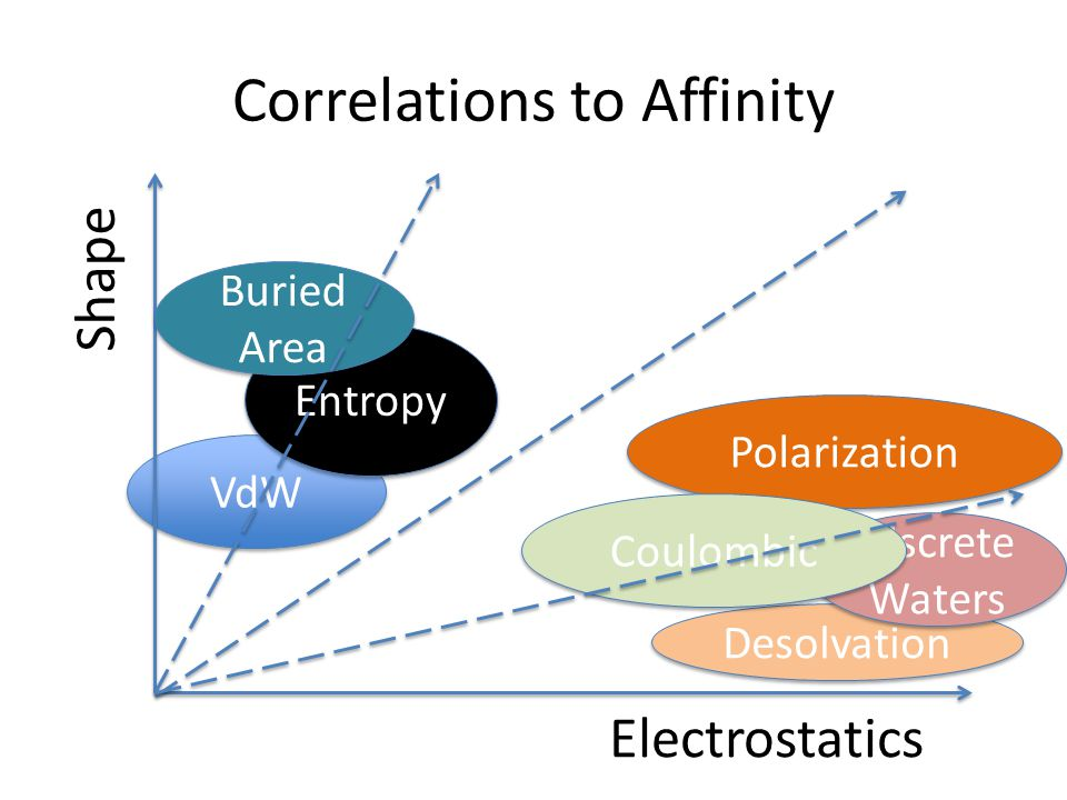 Correlations to Affinity VdW Desolvation Entropy Discrete Waters Polarization Buried Area Shape Electrostatics Coulombic