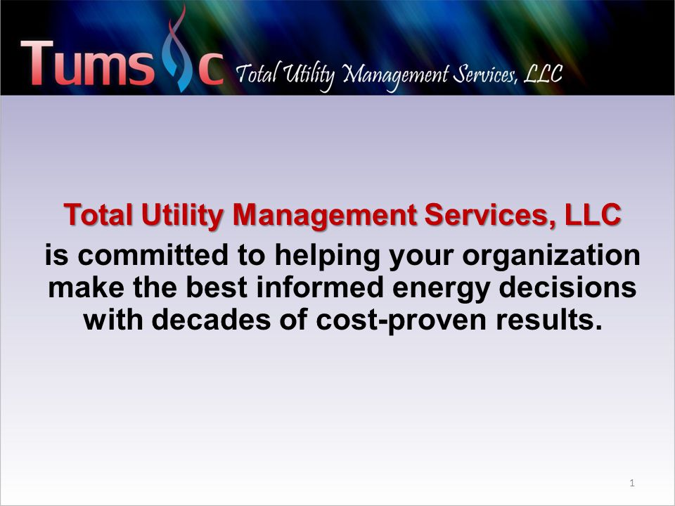Total Utility Management Services, LLC is committed to helping your organization make the best informed energy decisions with decades of cost-proven results.