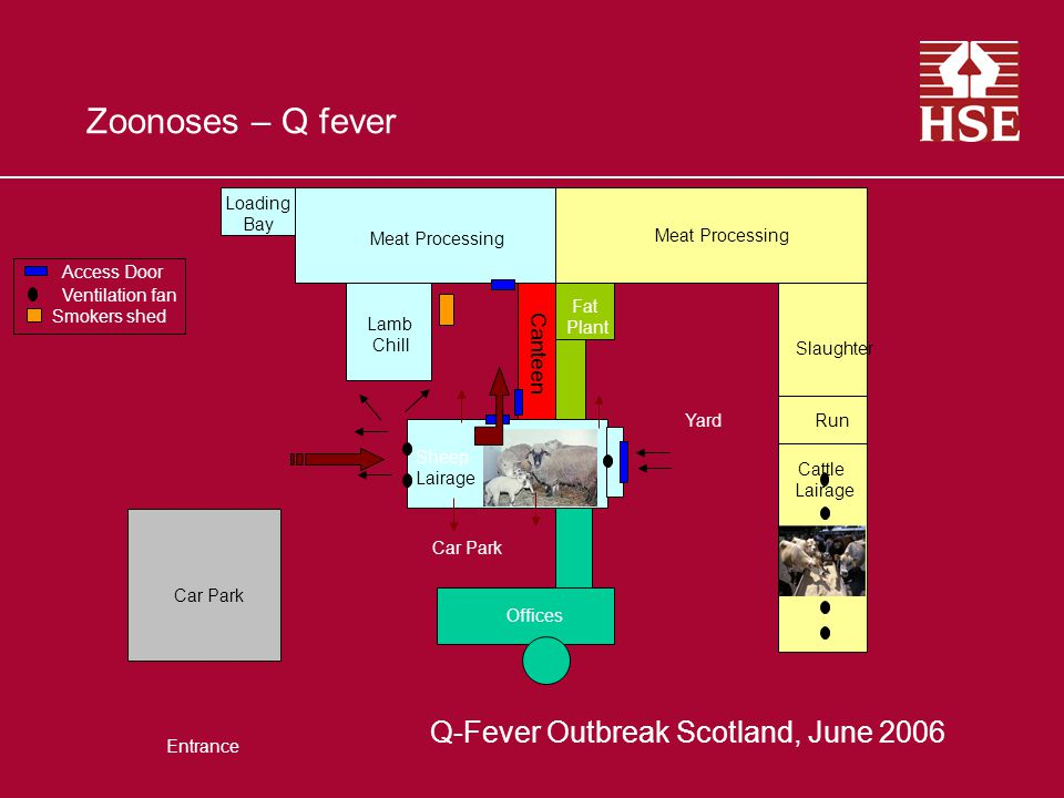Meat Processing Lamb Chill Fat Plant Slaughter Meat Processing Canteen Loading Bay Cattle Lairage RunYard Sheep Lairage Car Park Entrance Offices Zoonoses – Q fever Smokers shed Access Door Ventilation fan Canteen Q-Fever Outbreak Scotland, June 2006