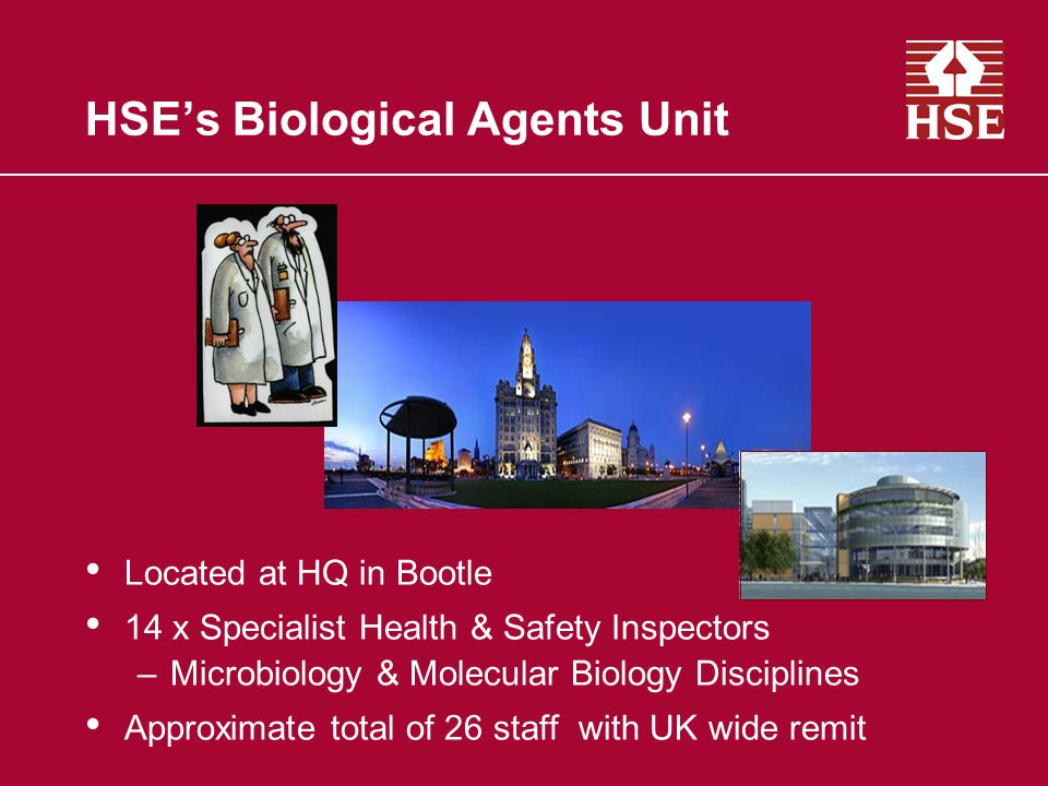 HSE's Biological Agents Unit Located at HQ in Bootle 14 x Specialist Health & Safety Inspectors –Microbiology & Molecular Biology Disciplines Approximate total of 26 staff with UK wide remit