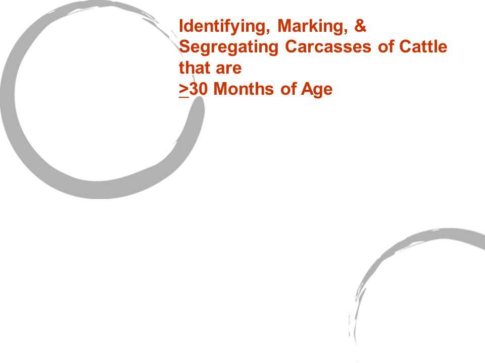 Identifying, Marking, & Segregating Carcasses of Cattle that are >30 Months of Age