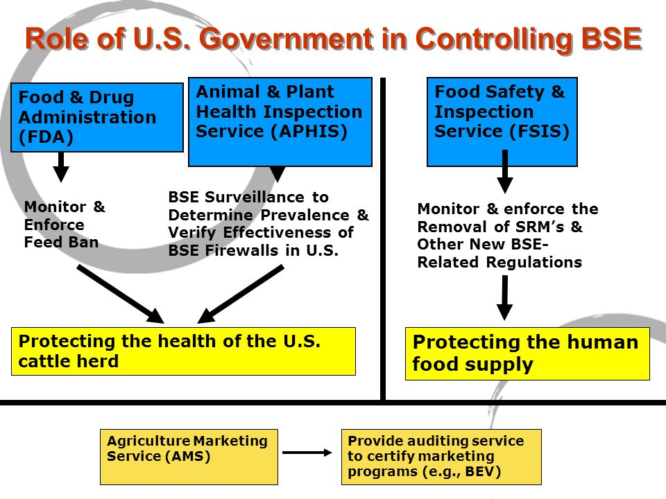 Role of U.S. Government in Controlling BSE Protecting the health of the U.S.