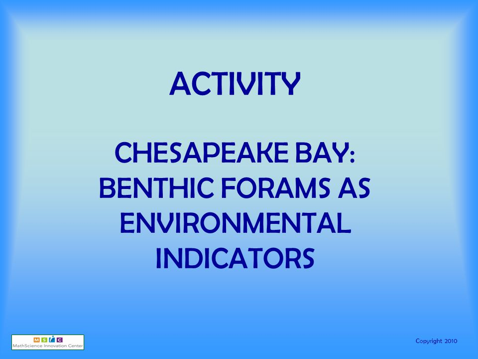 Copyright 2010 ACTIVITY CHESAPEAKE BAY: BENTHIC FORAMS AS ENVIRONMENTAL INDICATORS