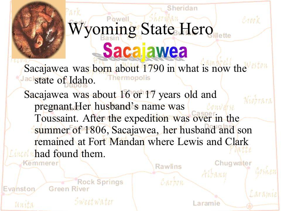 Barb Austin LCSD#1 Wyoming State Flag