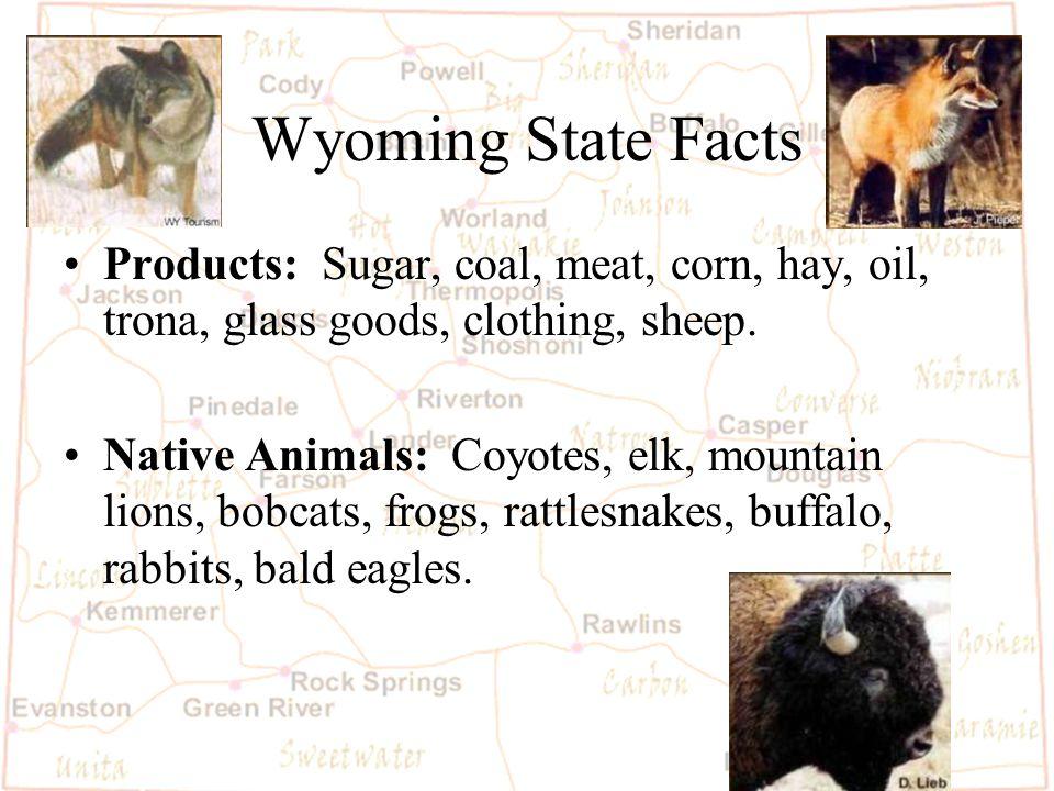 Barb Austin LCSD#1 Wyoming Mining About 18,000 Wyomingites work in mining.