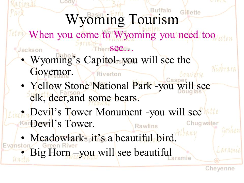 Barb Austin LCSD#1 Wyoming State License Plate Created by Leondro Carabajal!