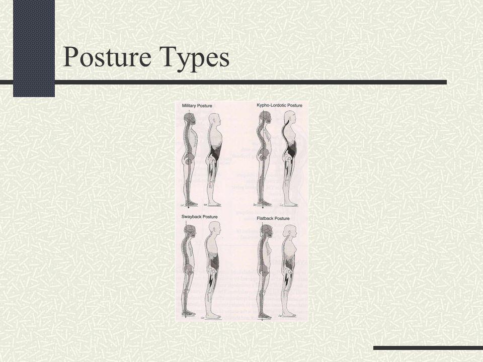 Posterior View Evaluation Occipital protruberance.