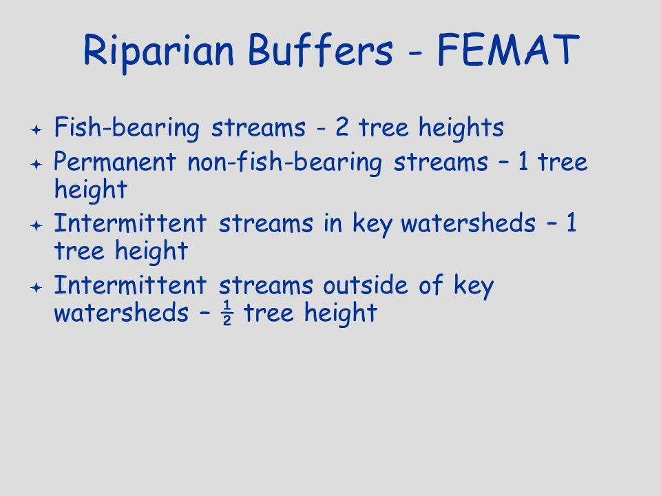 Riparian Buffers - FEMAT  Fish-bearing streams - 2 tree heights  Permanent non-fish-bearing streams – 1 tree height  Intermittent streams in key wa