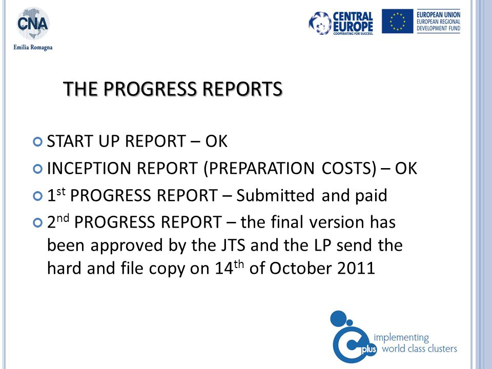 PROGRESS REPORT 3 rd PROGRESS REPORT – to be developed in October/November THE TEMPLATE WILL BE UPLOADED IN THE WEB SITE