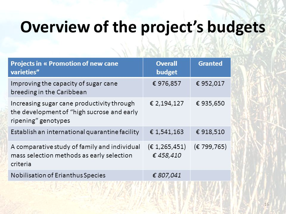 """Overview of the project's budgets Projects in « Promotion of new cane varieties"""" Overall budget Granted Improving the capacity of sugar cane breeding"""