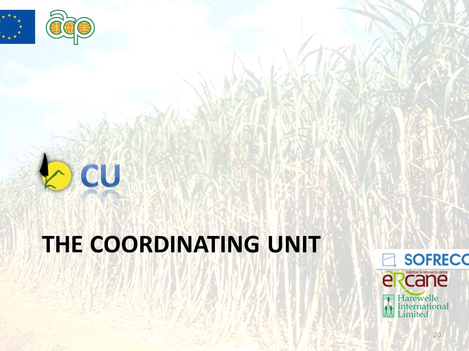 THE COORDINATING UNIT 20