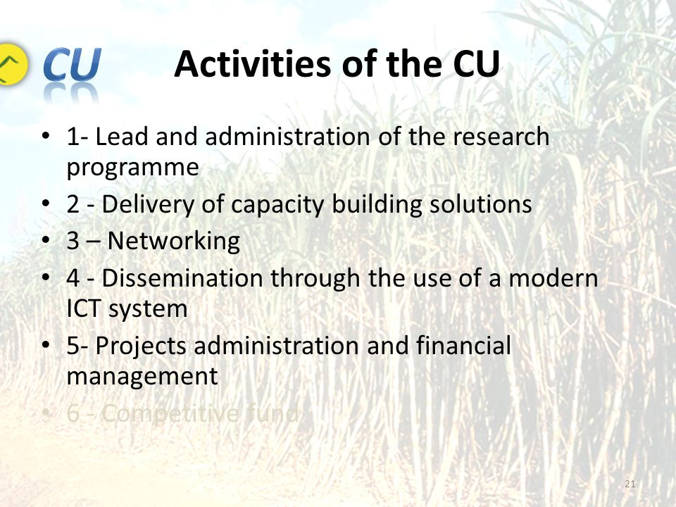 Activities of the CU 21 1- Lead and administration of the research programme 2 - Delivery of capacity building solutions 3 – Networking 4 - Dissemination through the use of a modern ICT system 5- Projects administration and financial management 6 - Competitive fund